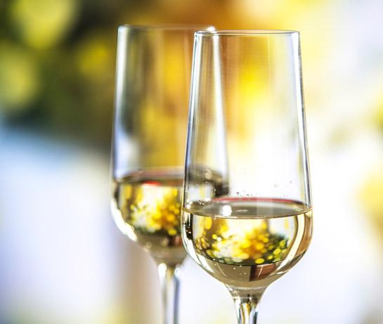 Sekt Anstossen Feste Feierlichkeiten Hochzeit Hotel Waldsee